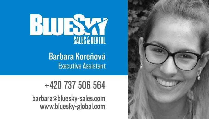 BlueSky Sales cards-Barbara N